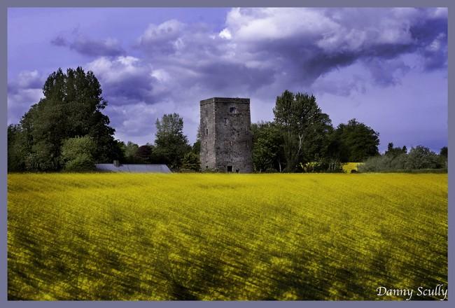Poulakerry Castle