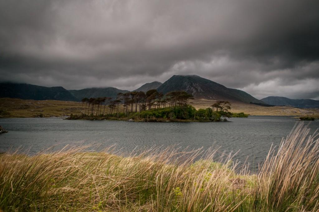Windswept Island